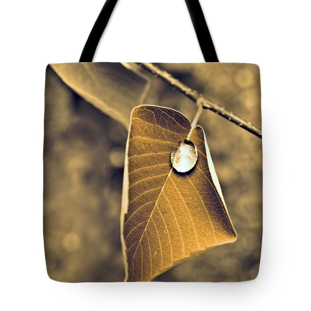 Leaf Tote Bag featuring the photograph June 18 2010 by Tara Turner