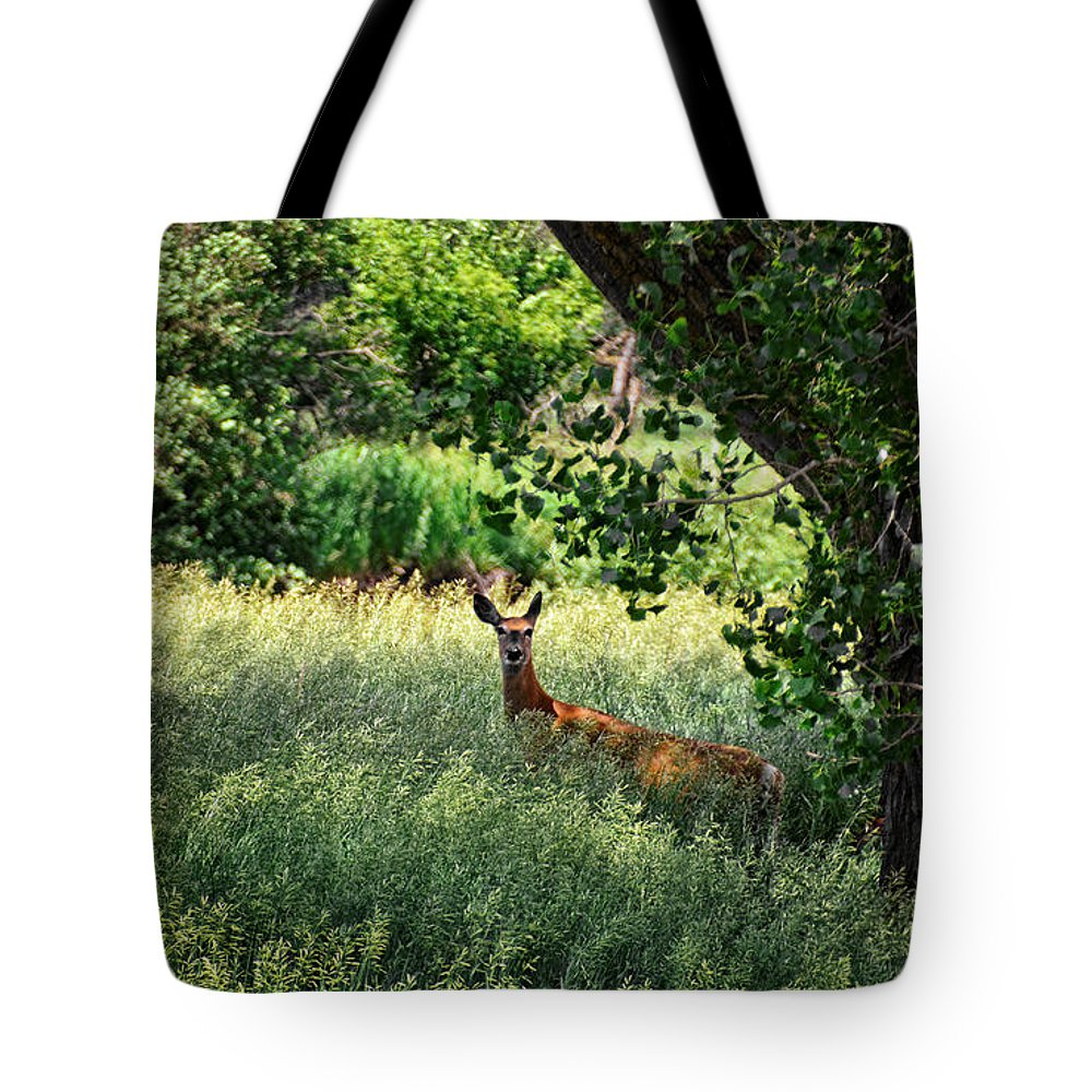 South Dakota Tote Bag featuring the photograph June Doe In Tall Grass by M Dale