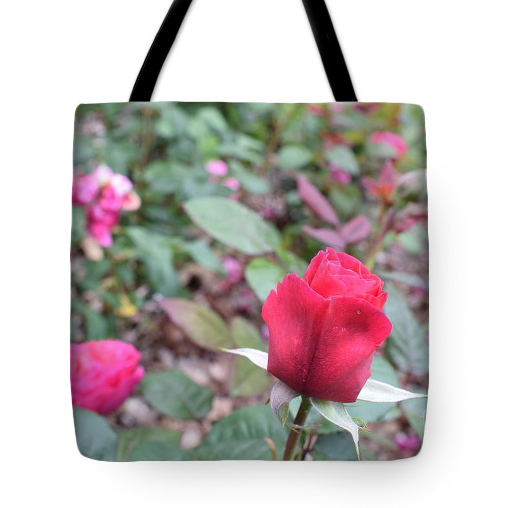 Tote Bag featuring the photograph June Rose #4 by Jordan Butterfield