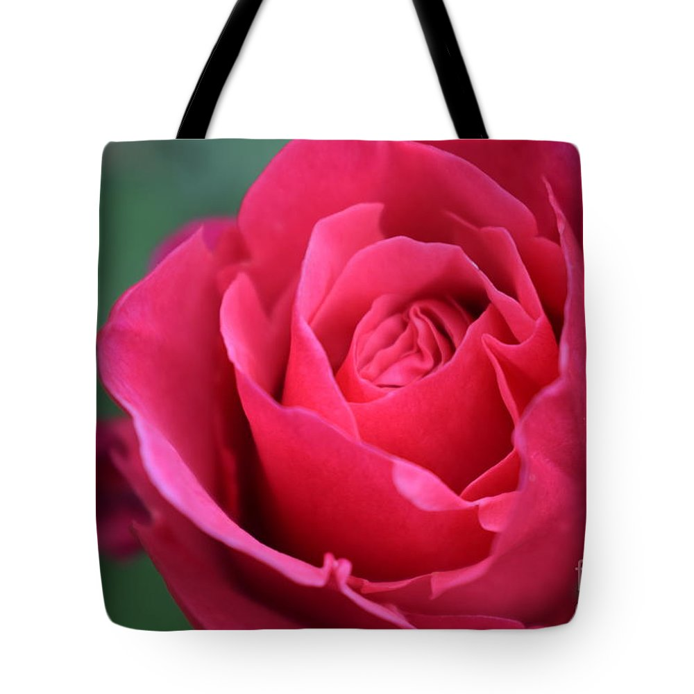 Tote Bag featuring the photograph June Rose #8 by Jordan Butterfield
