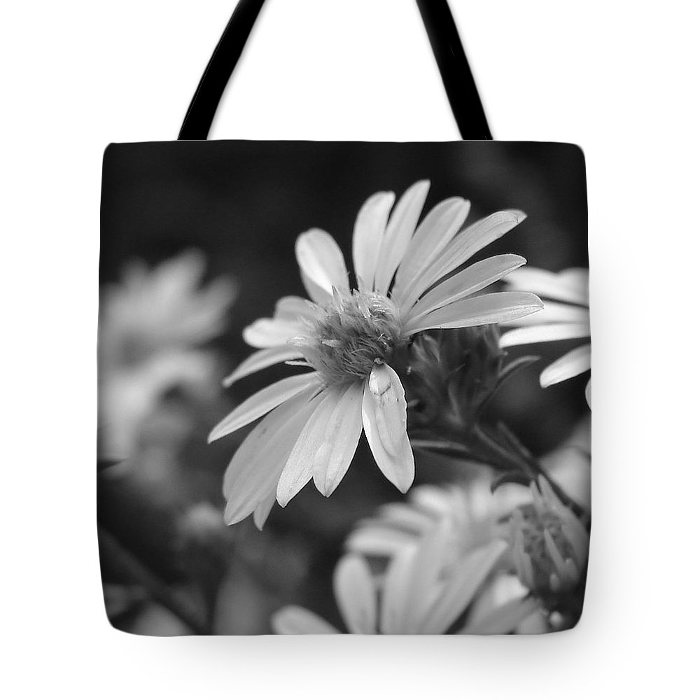 Tote Bag featuring the photograph Just Black And White by Luciana Seymour