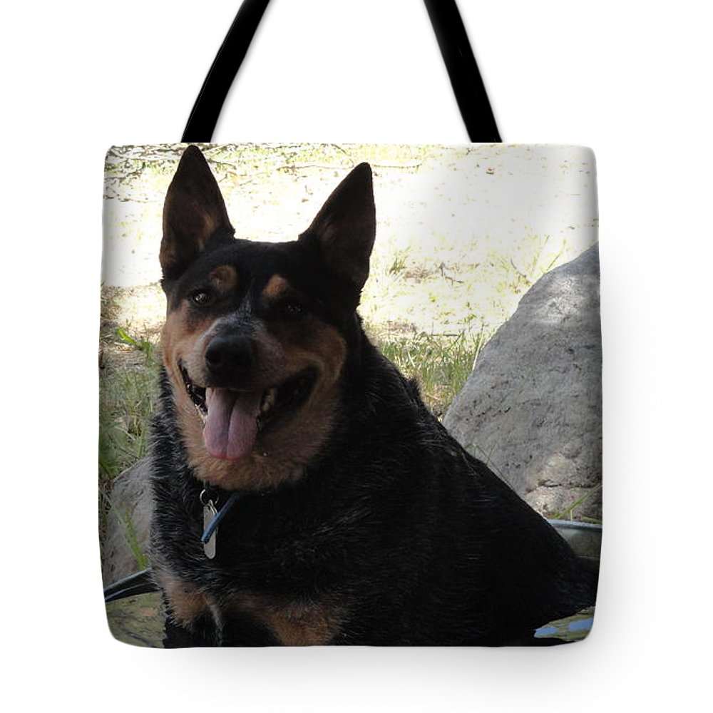 Queensland Heeler Tote Bag featuring the painting Just Chilling by Carol Avants