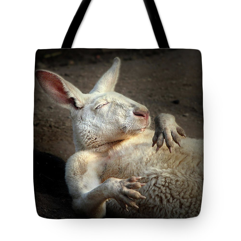 Albino Red Kangaroo Tote Bag featuring the photograph Just Chilling by Marion Cullen