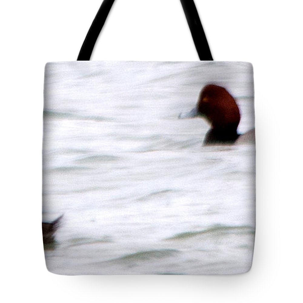 Red Head Duck Tote Bag featuring the photograph Just Drifting by Linda Kerkau