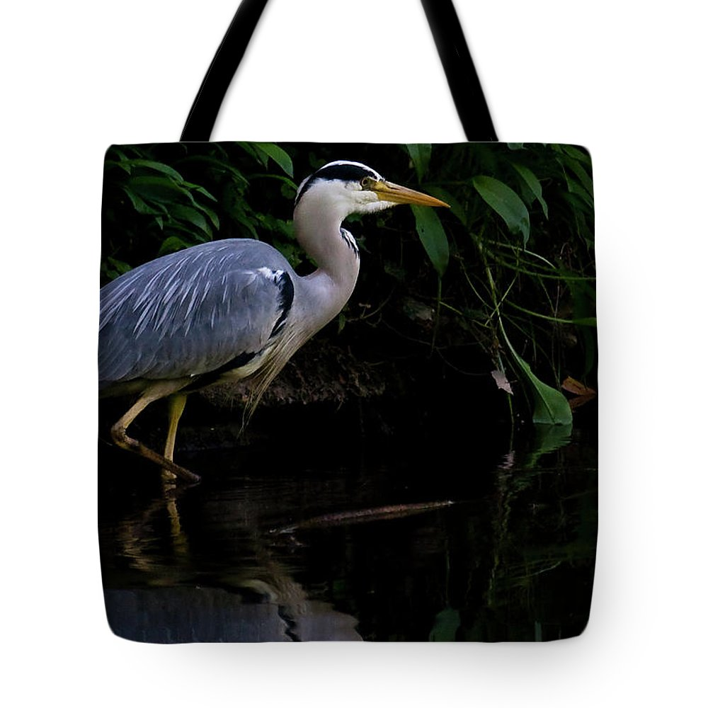 Ardea Cinerea Tote Bag featuring the photograph Just Fishing by Brian Roscorla
