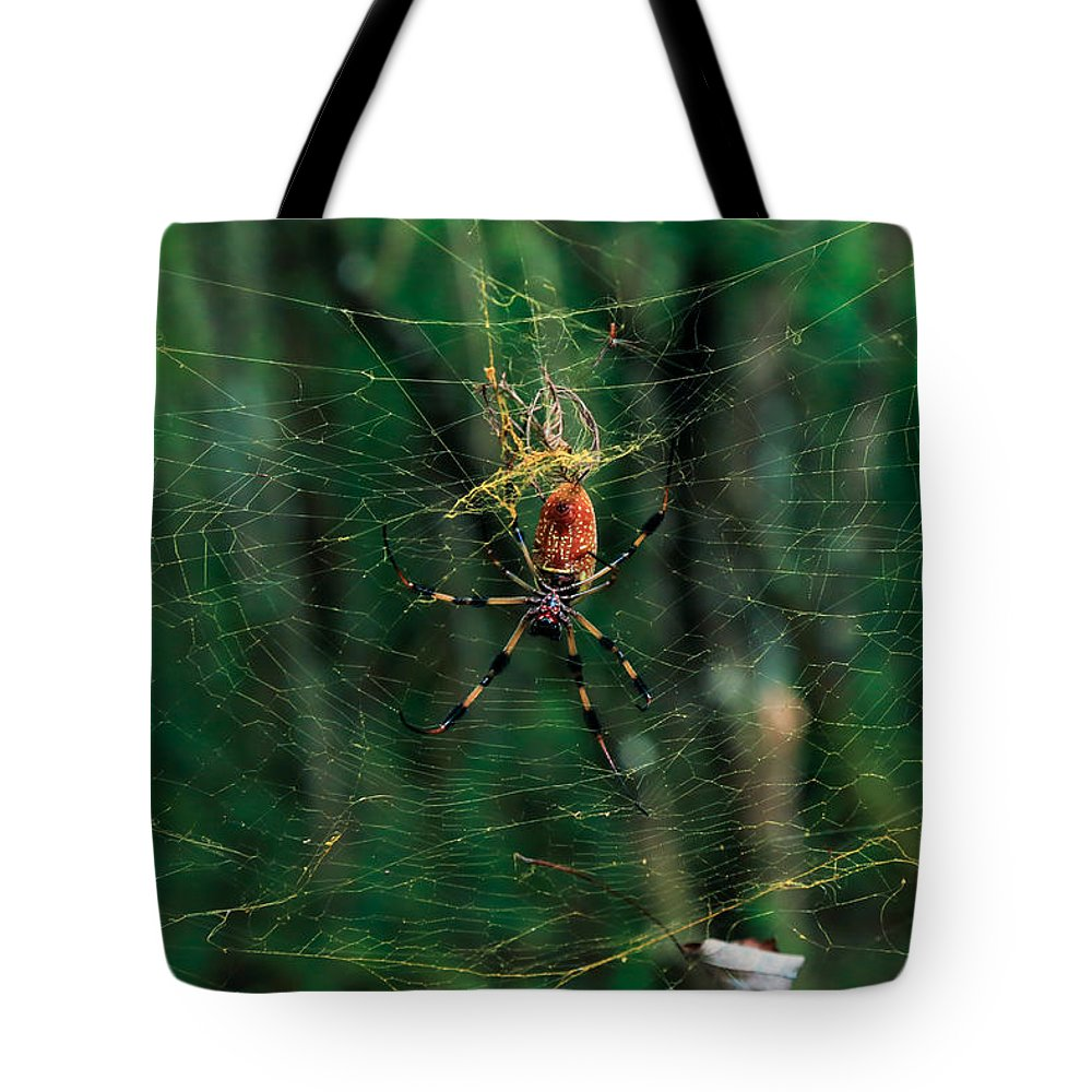 Spider Tote Bag featuring the photograph Just Hangin' Around by Christopher L Thomley