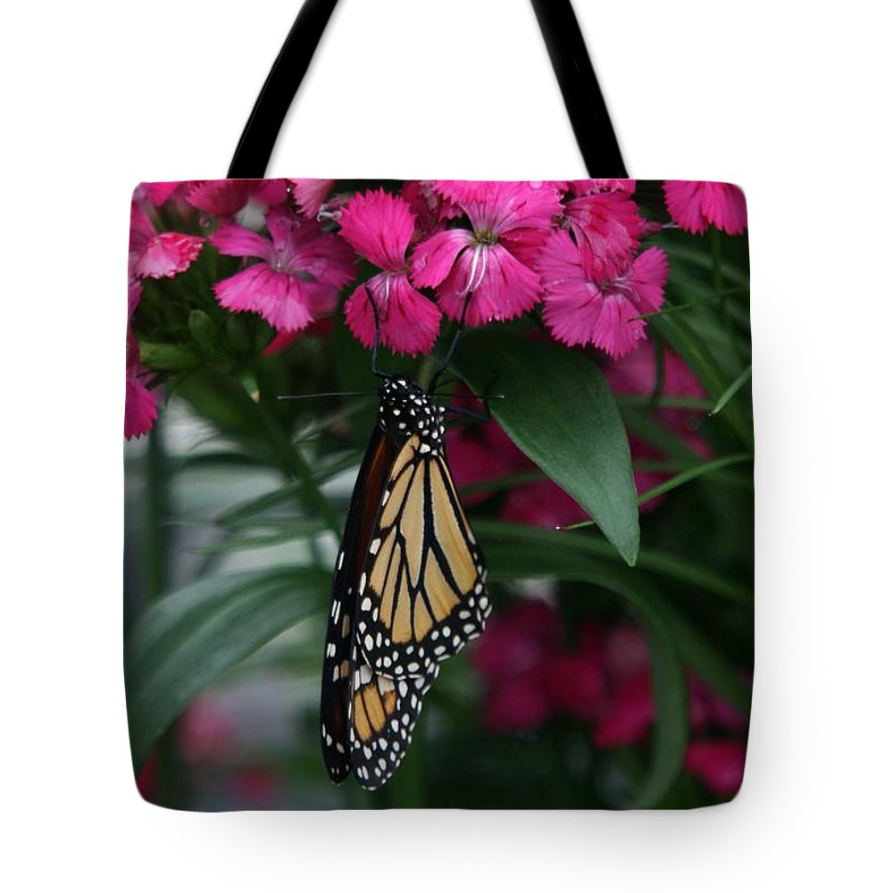 Nature Tote Bag featuring the photograph Just Hangin' Out by Crystal Nederman