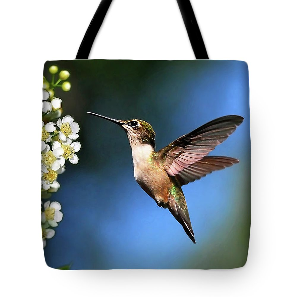 Hummingbird Tote Bag featuring the photograph Just Looking by Christina Rollo