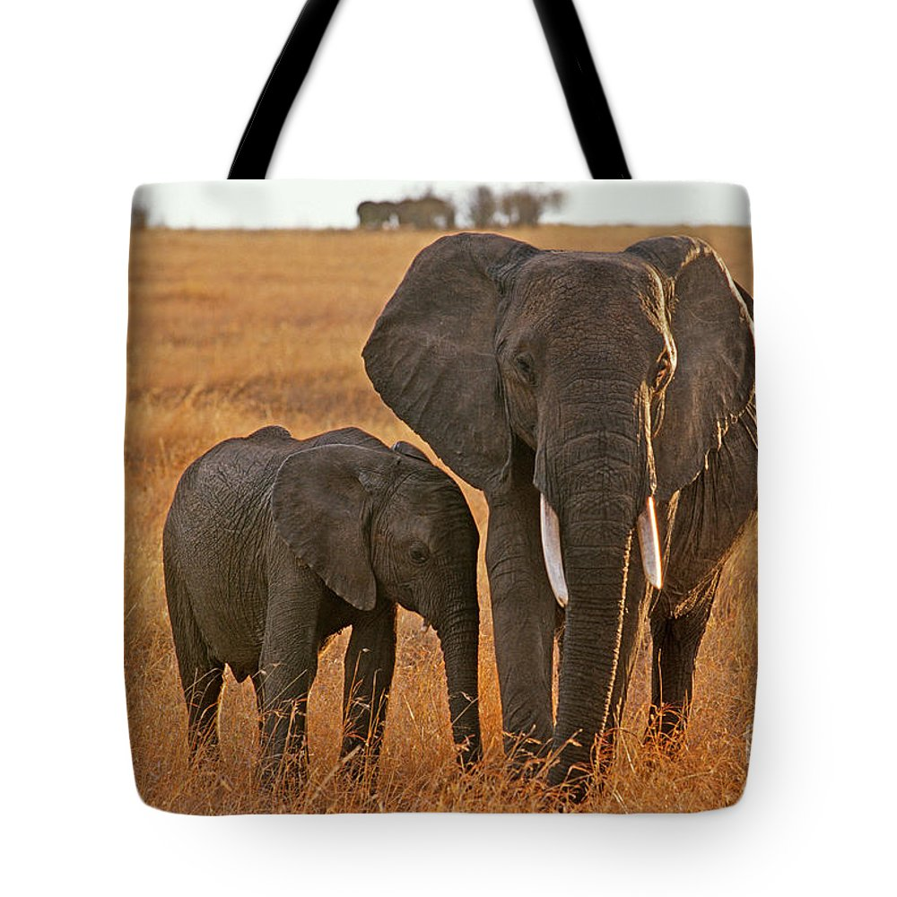 Africa Tote Bag featuring the photograph Just Mom And Me by Sandra Bronstein