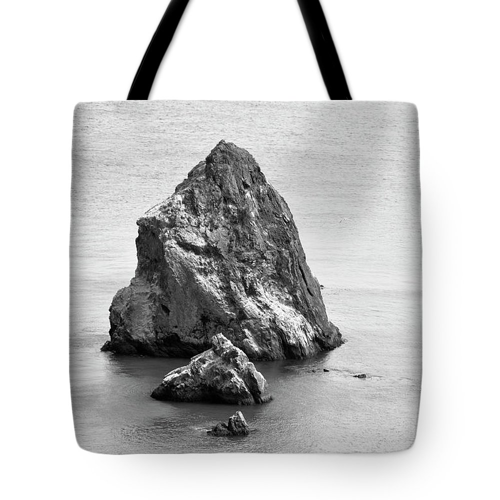 Stone Tote Bag featuring the photograph Just Right by Amy Dooley