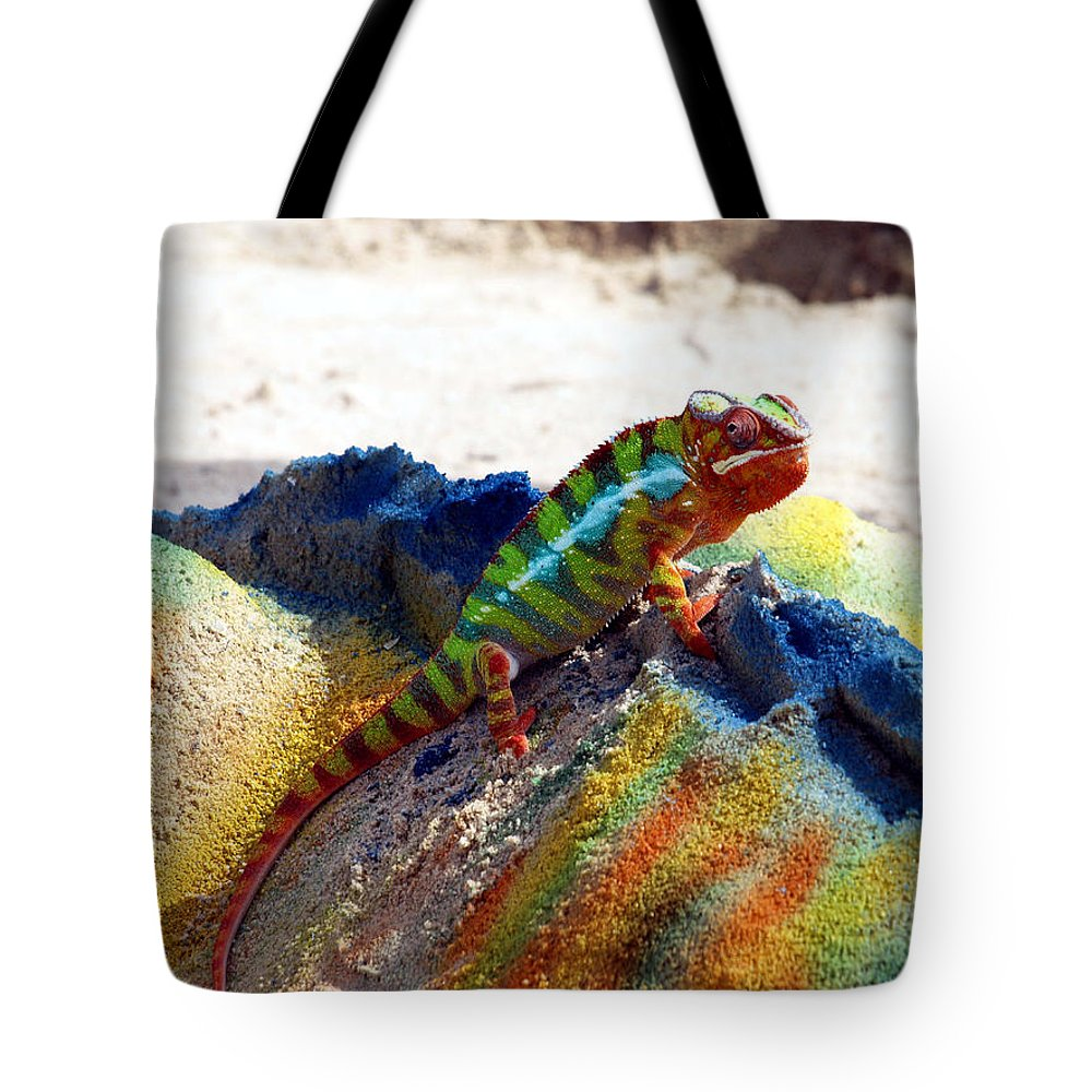 Beach Tote Bag featuring the photograph Karma Kameleon by Bruce Gannon