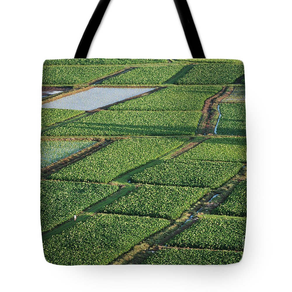 Afternoon Tote Bag featuring the photograph Kauai, Hanelei Valley by Dana Edmunds - Printscapes