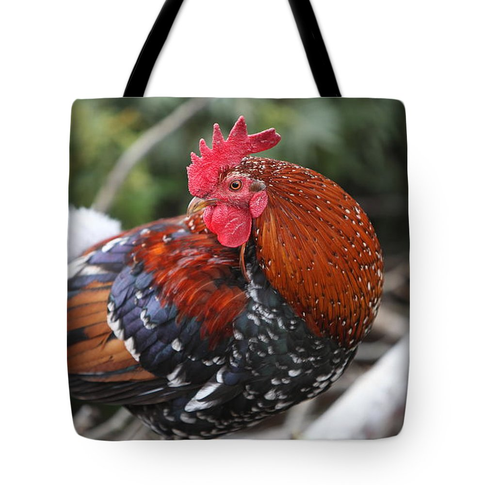 Rooster Tote Bag featuring the photograph Kauai Rooster by Nadine Rippelmeyer