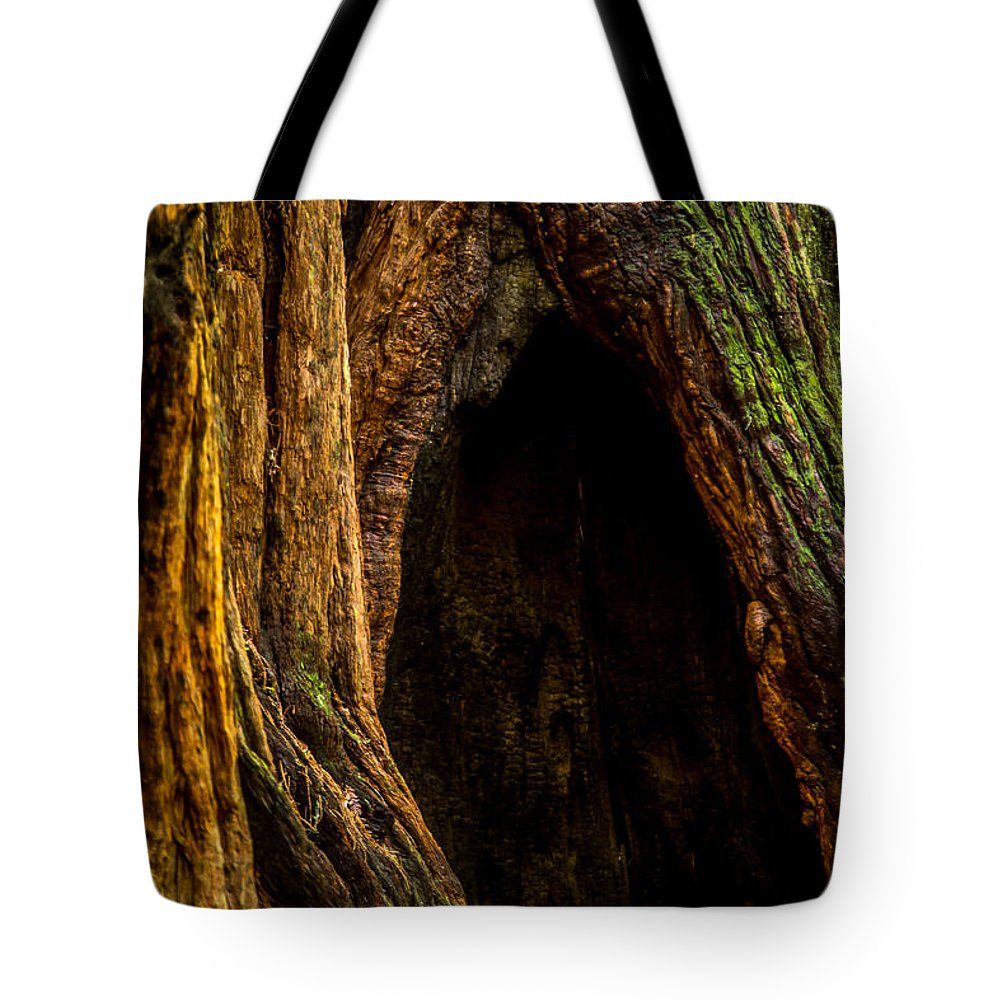 Woods Tote Bag featuring the photograph Keebler Cove by Tony Noto