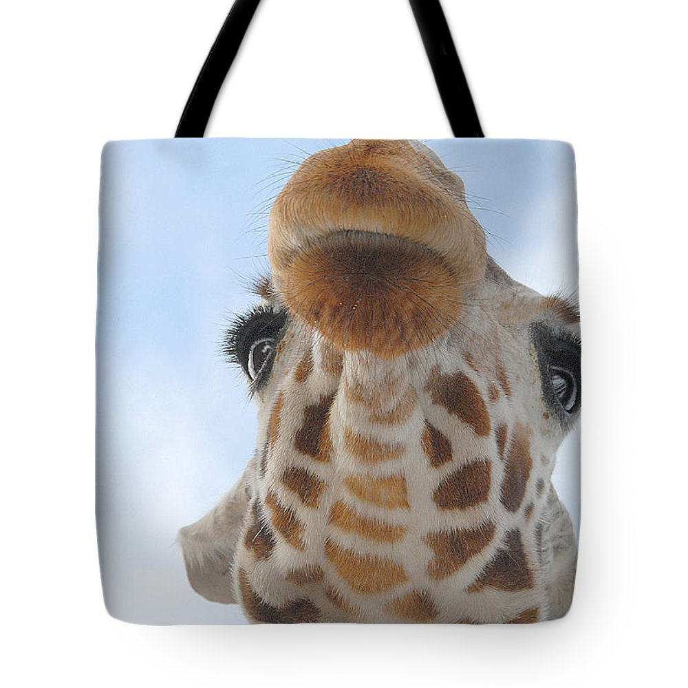 Giraffe Tote Bag featuring the photograph Keep Your Chin Up by Dyle  Warren