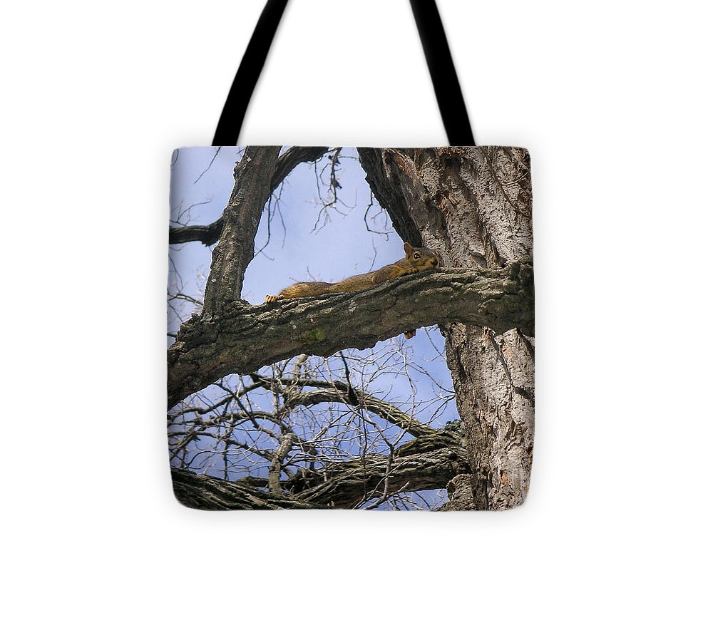 Nature Tote Bag featuring the photograph Keeping A Low Profile by Lucyna A M Green
