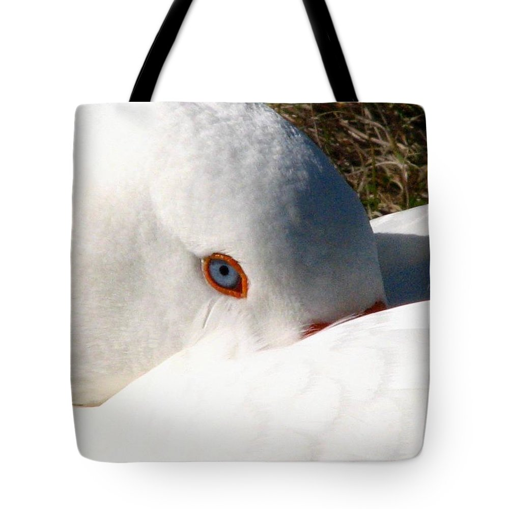 Geese Tote Bag featuring the photograph Keeping A Watchful Eye by J M Farris Photography