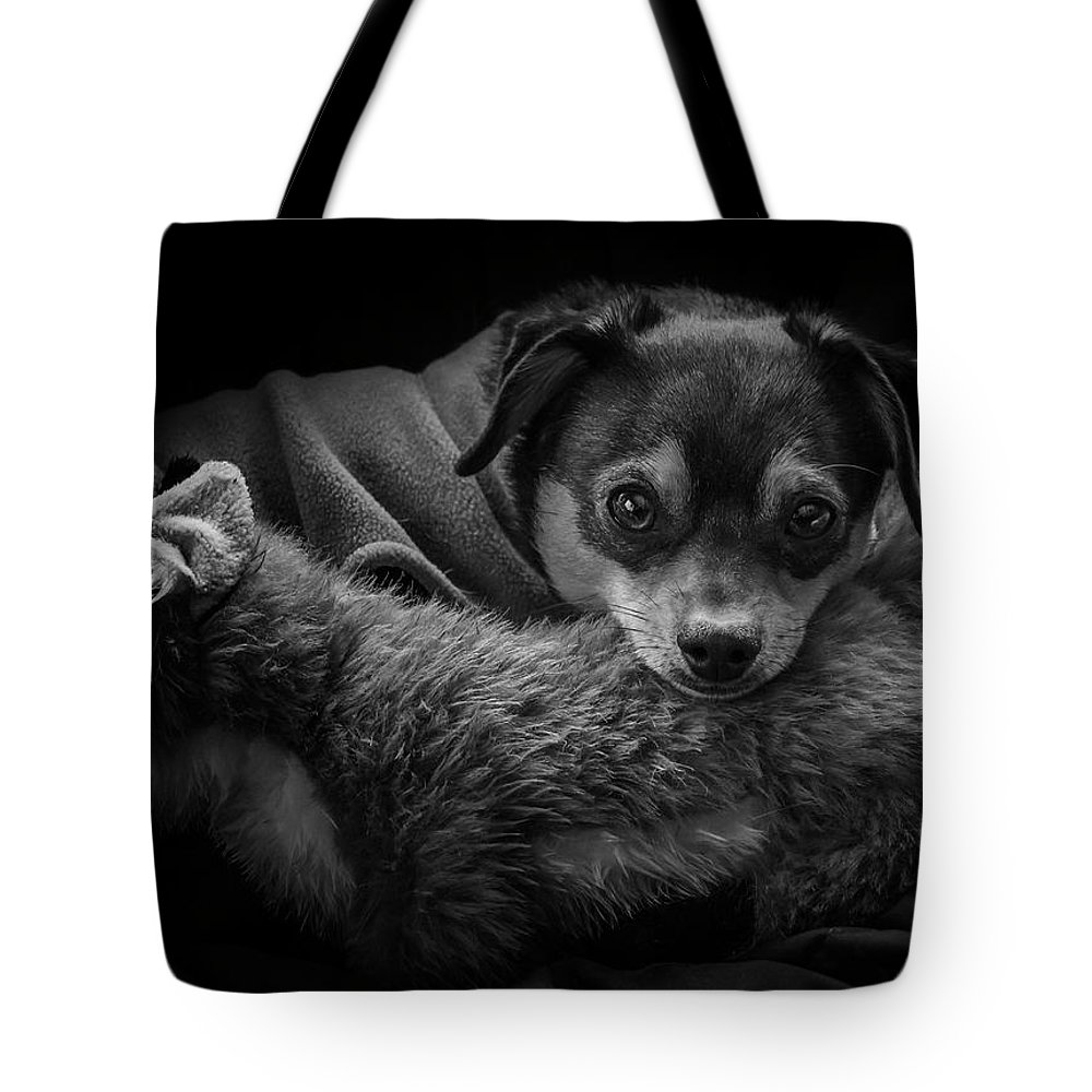 Ron Jones Tote Bag featuring the photograph Keeping Warm by Ron Jones