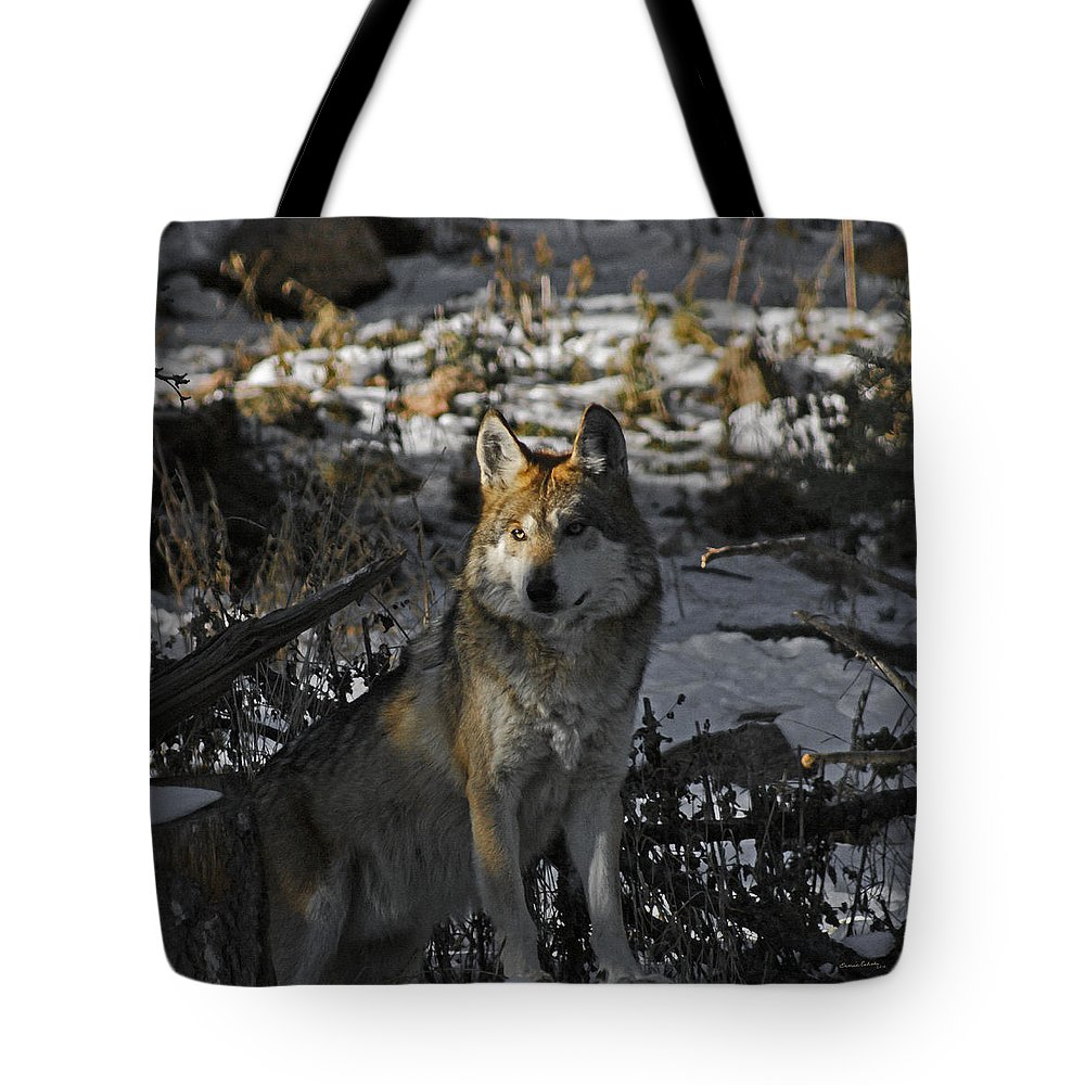 Wolf Tote Bag featuring the photograph Keeping Watch by Ernie Echols