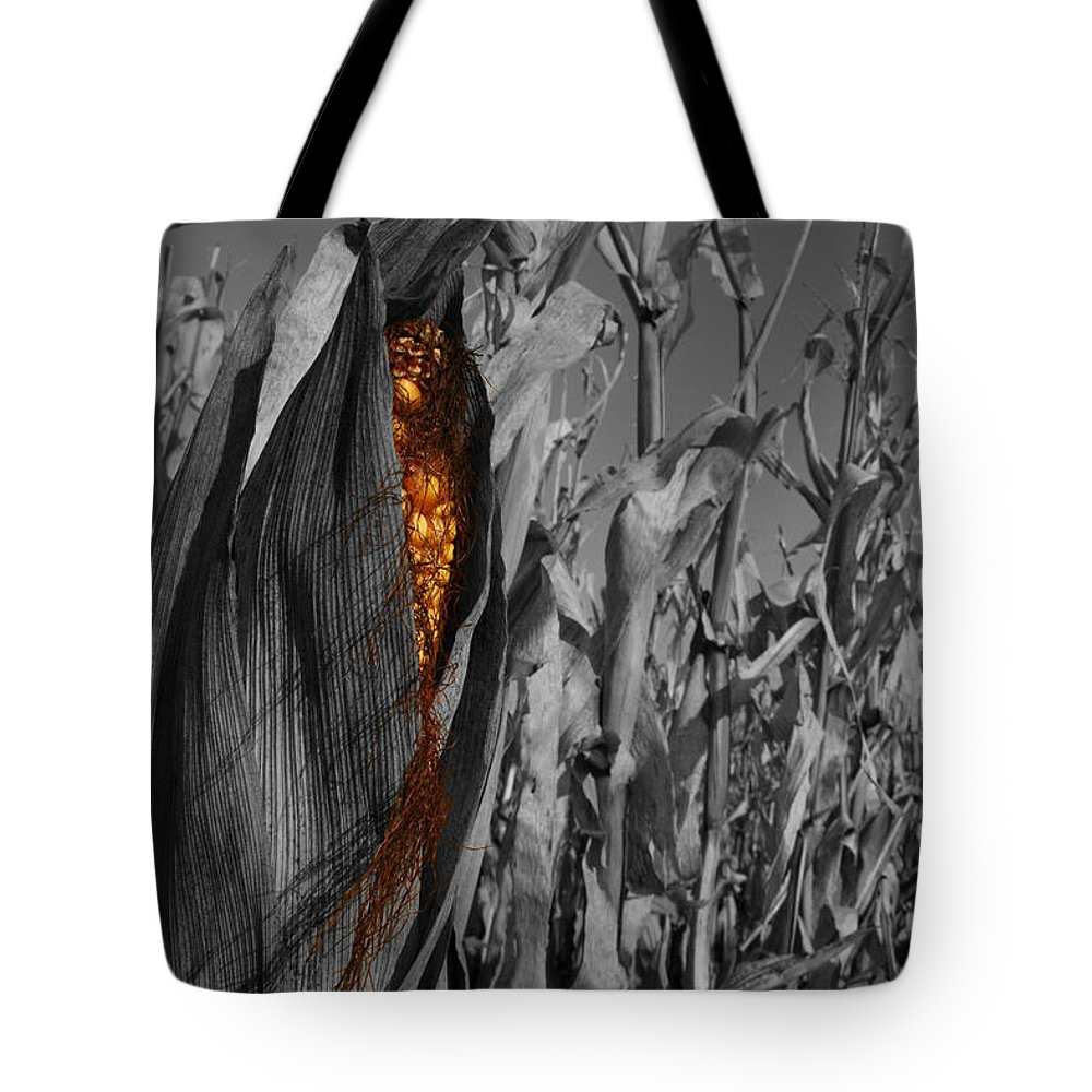 Color Desaturation Tote Bag featuring the photograph Kernels And Silk by Dylan Punke