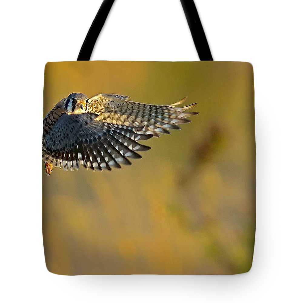 Kestrel Tote Bag featuring the photograph Kestrel Takes Flight by William Jobes