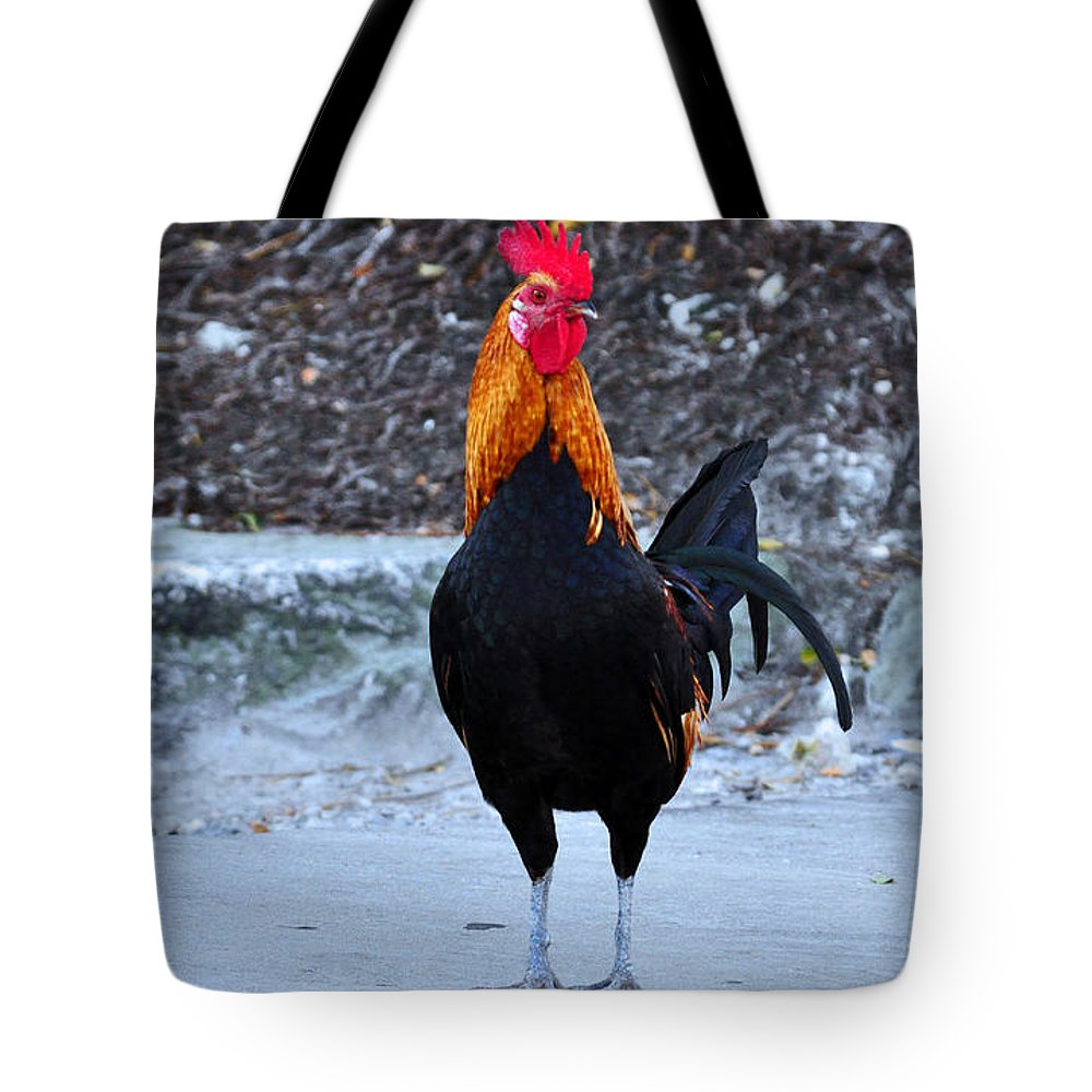 Key West Tote Bag featuring the photograph Key West Cock by Davids Digits