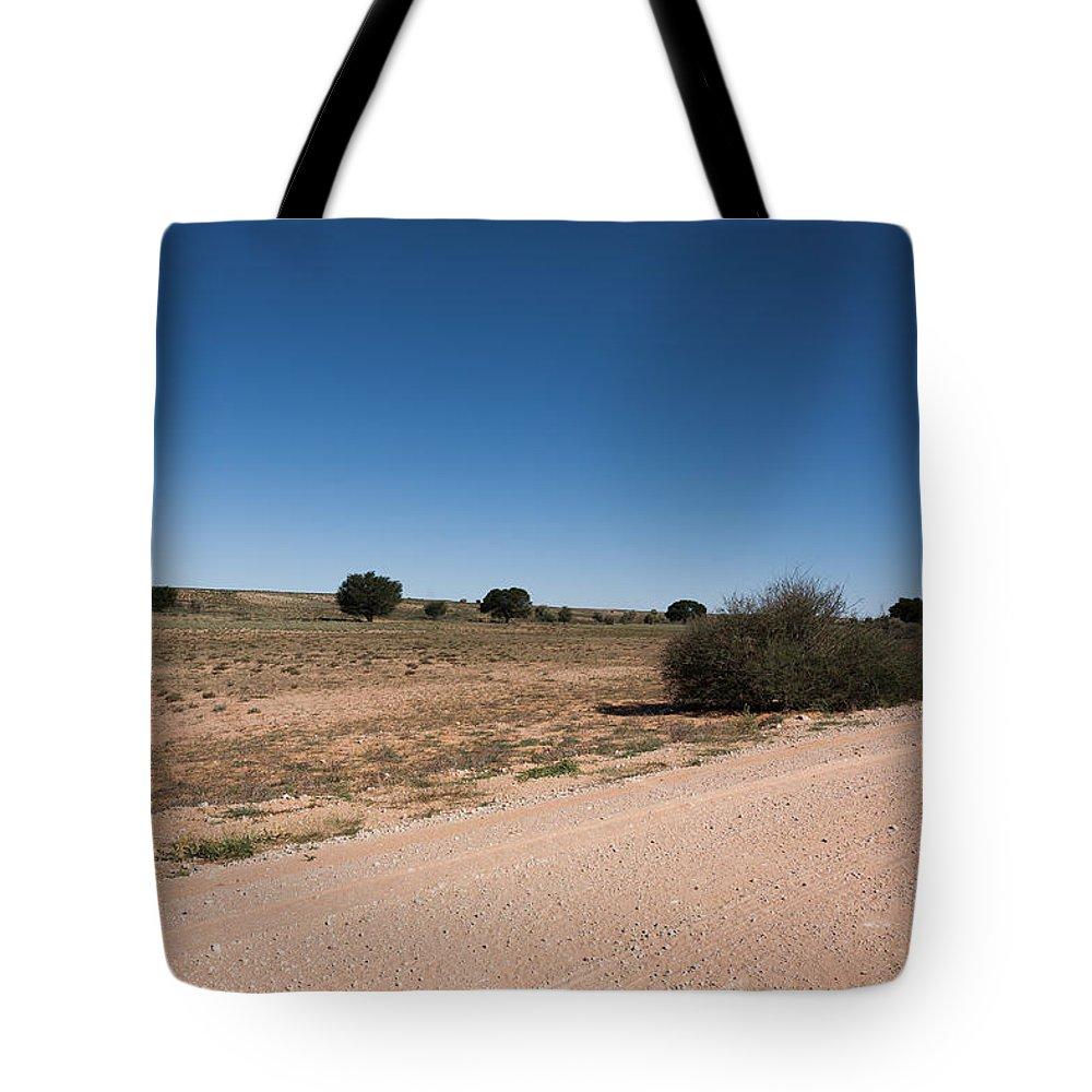 Kgalagadi Tote Bag featuring the photograph Kgalagadi by Davide Guidolin