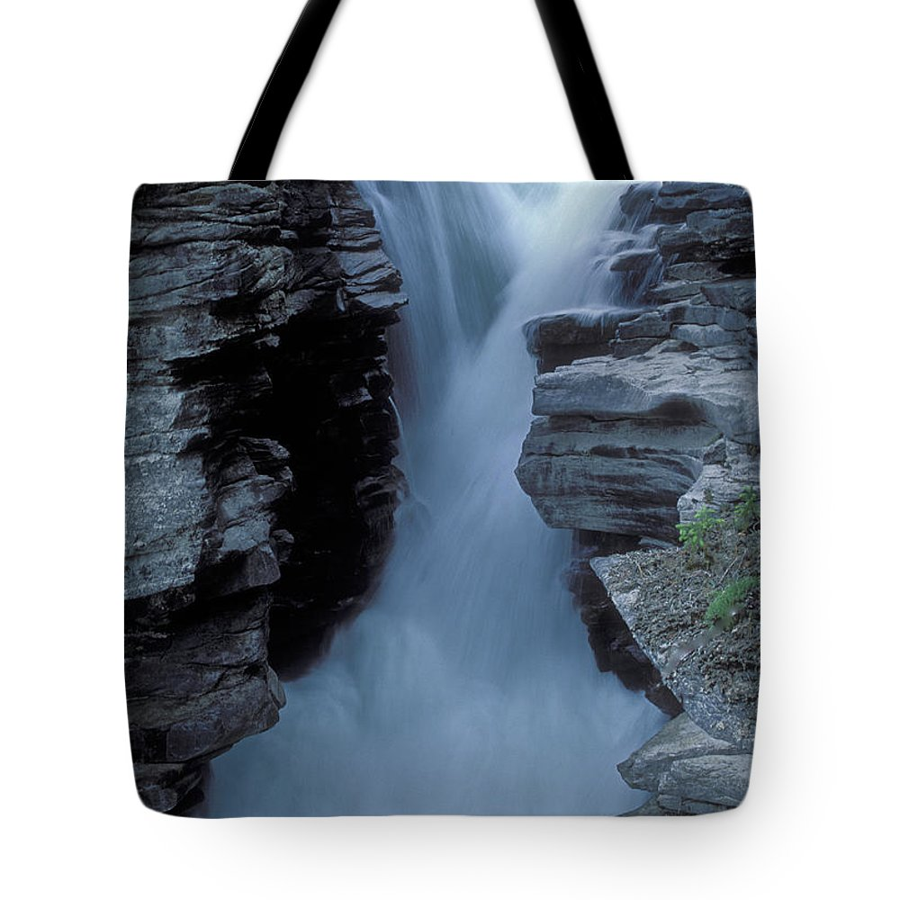 Kicking Horse River Tote Bag featuring the photograph Kicking Horse River by Sandra Bronstein