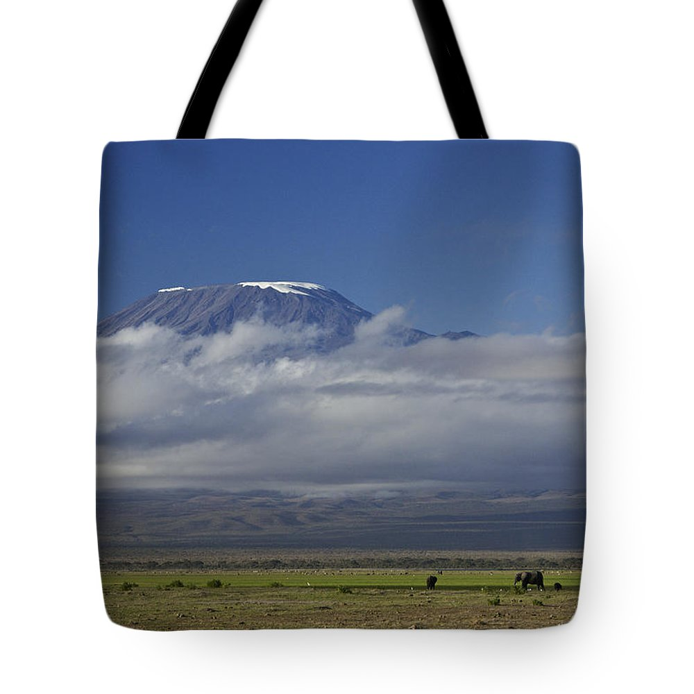 Africa Tote Bag featuring the photograph Kilimanjaro With Elephants by Michele Burgess