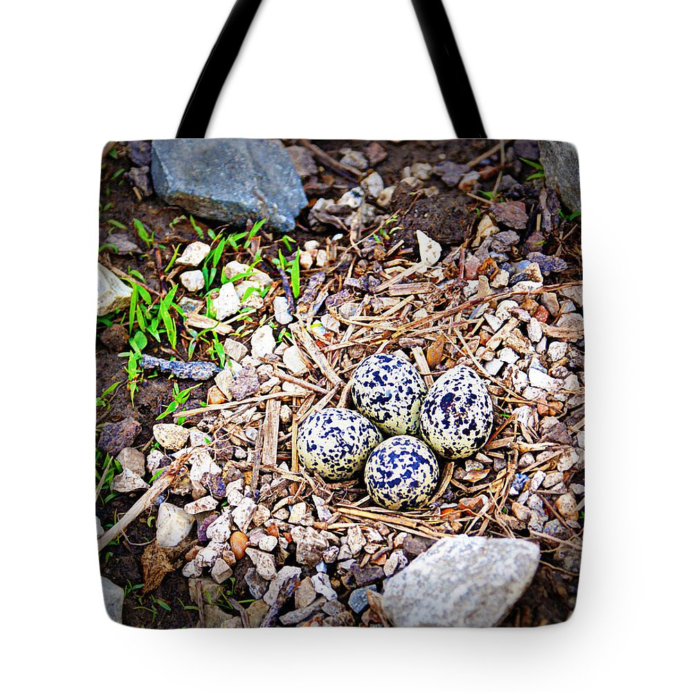 Eggs Tote Bag featuring the photograph Killdeer Nest by Cricket Hackmann