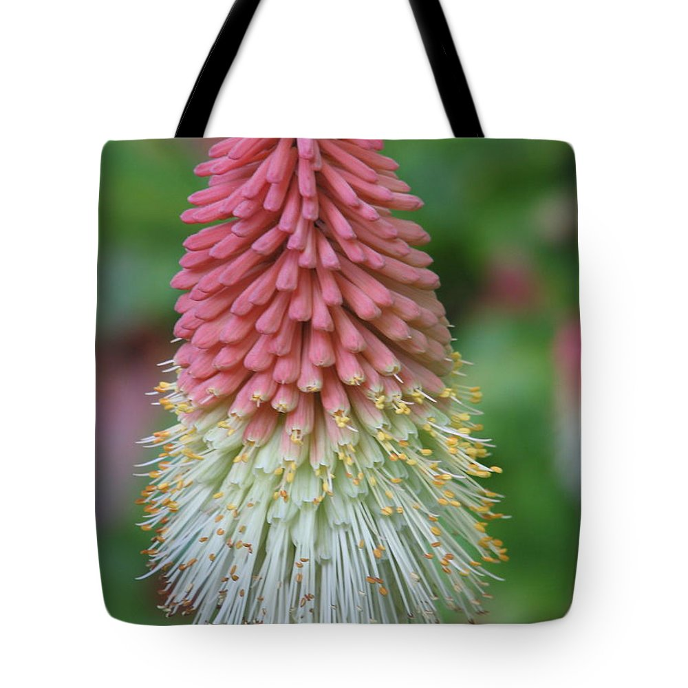 Flower Tote Bag featuring the photograph Kilmokea by Kelly Mezzapelle