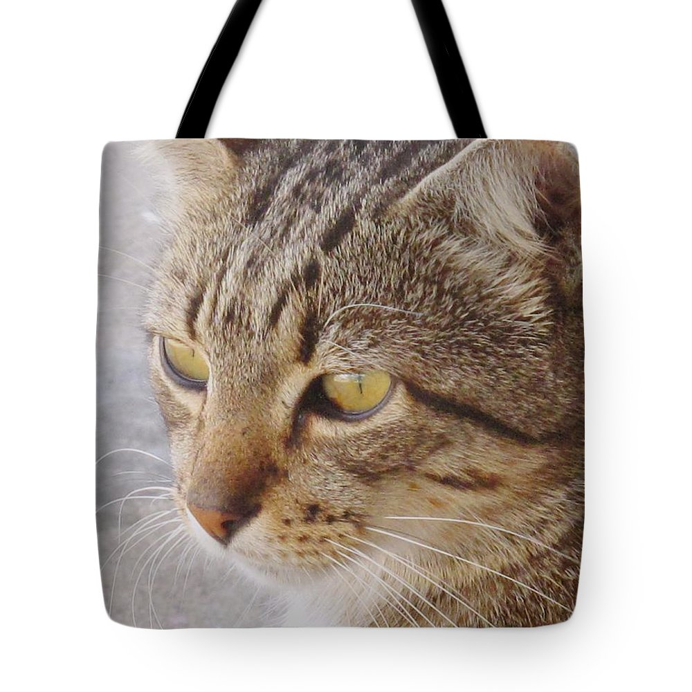 Cat Tote Bag featuring the photograph King Cat by Ian MacDonald