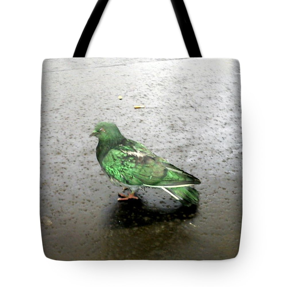 King Tote Bag featuring the photograph King by Sovy Photography