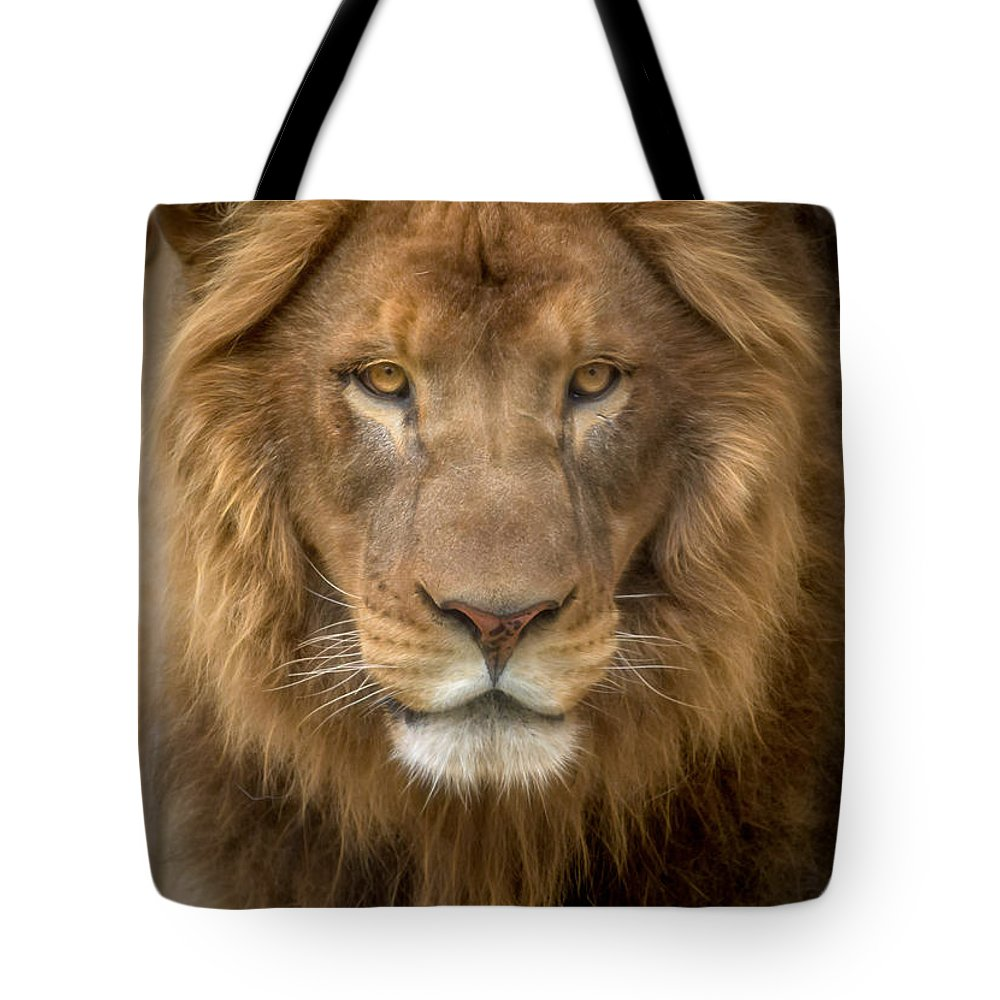Fine Art Tote Bag featuring the photograph King Of The Jungle by David Pine