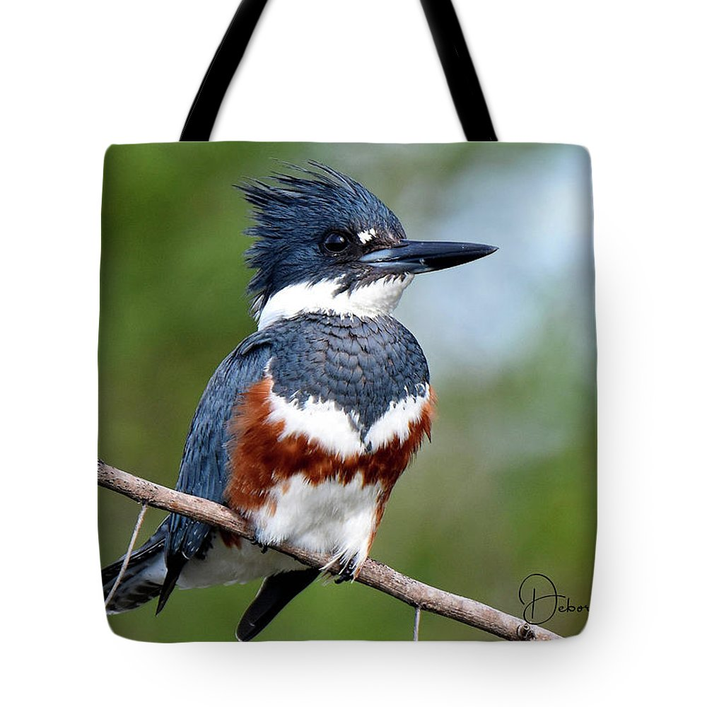 Florida Tote Bag featuring the photograph Kingfisher by Deborah Kainauskas