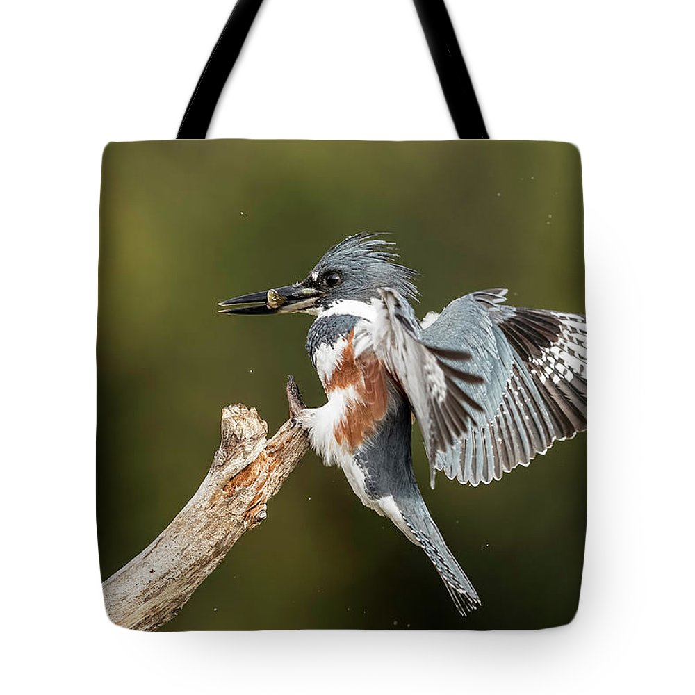 Kingfisher Tote Bag featuring the photograph Kingfisher by Les Lenchner
