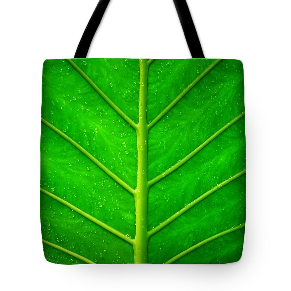 Plant Tote Bag featuring the photograph Kiss The Rain ... by Juergen Weiss