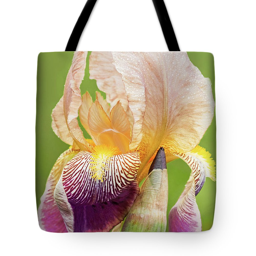Iris Tote Bag featuring the photograph Kissed By The Rain by Regina Geoghan