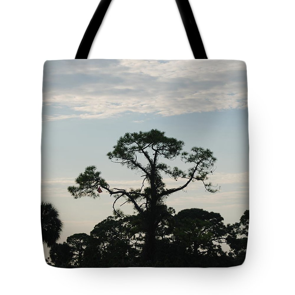 Kite Tote Bag featuring the photograph Kite In The Tree by Rob Hans