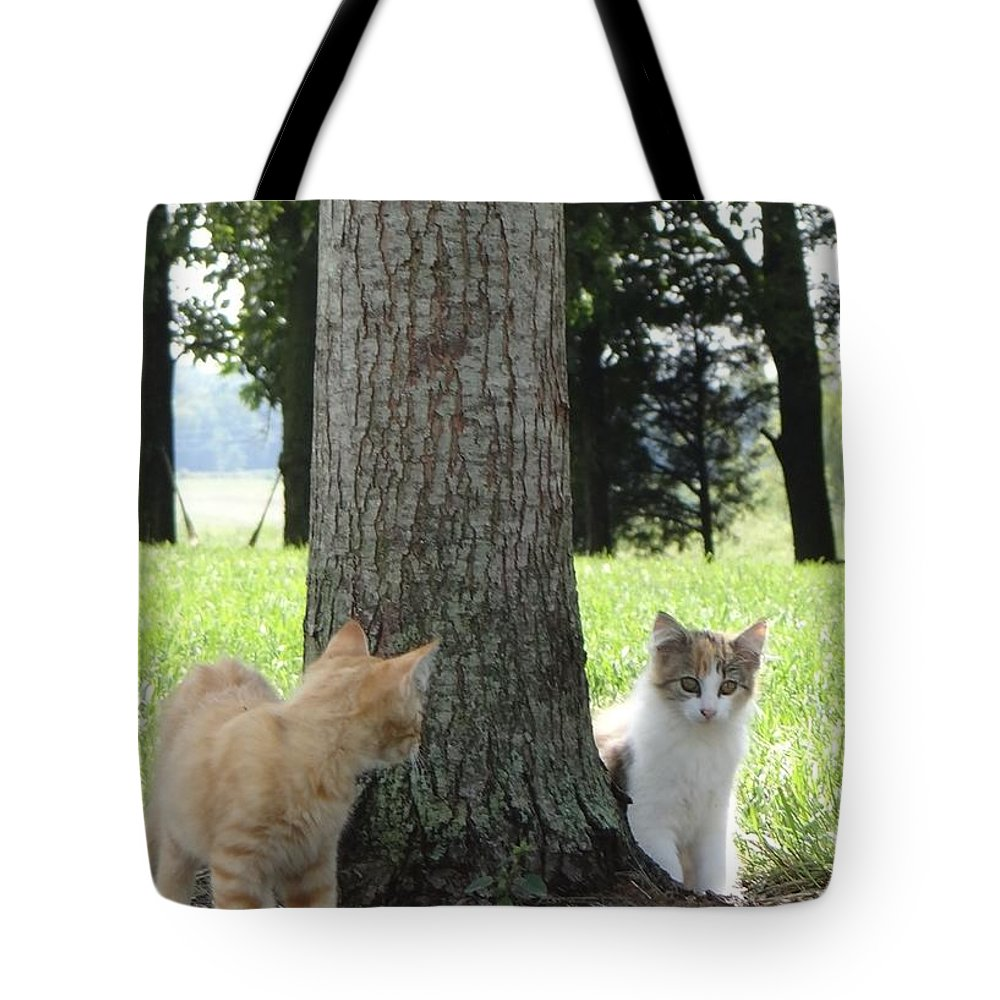 Outdoors Tote Bag featuring the photograph Kitten Calamity by Deb Rassel