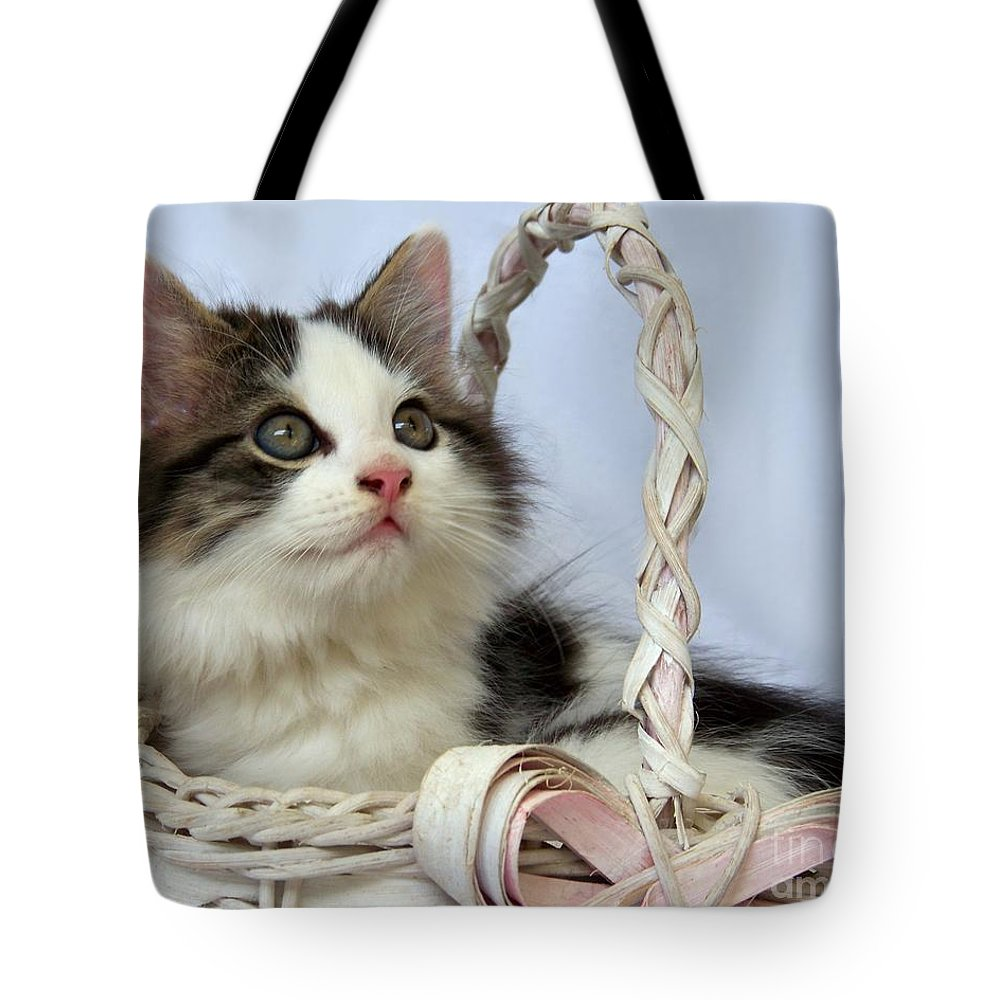 Kitten Tote Bag featuring the photograph Kitten In Basket by Jai Johnson