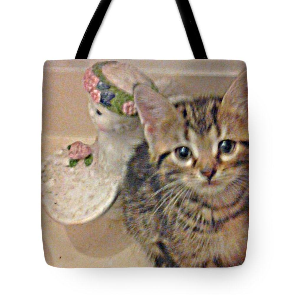 Tote Bag featuring the photograph Kitten Love by Shirley Riggs-spencer