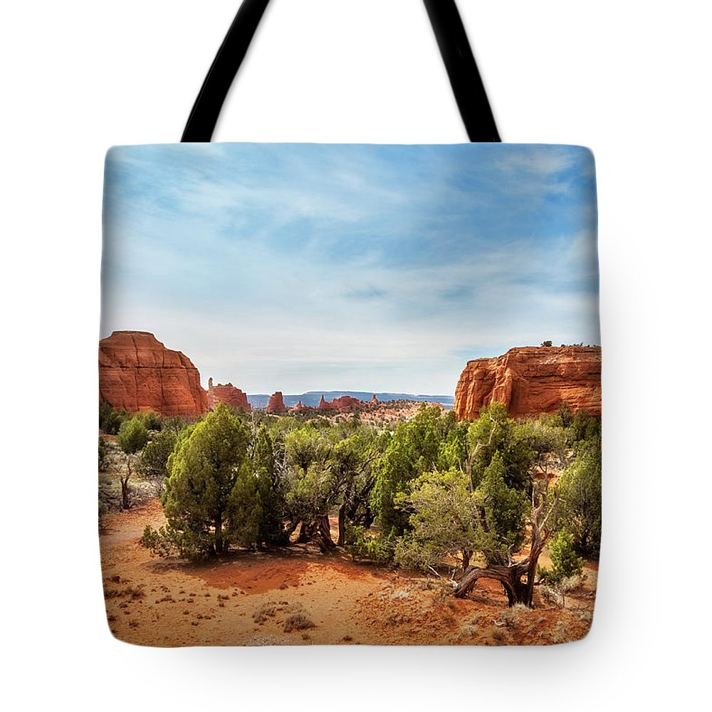 Bryce Tote Bag featuring the photograph Kodachrome Basin State Park, Utah, Usa by Daniela Constantinescu