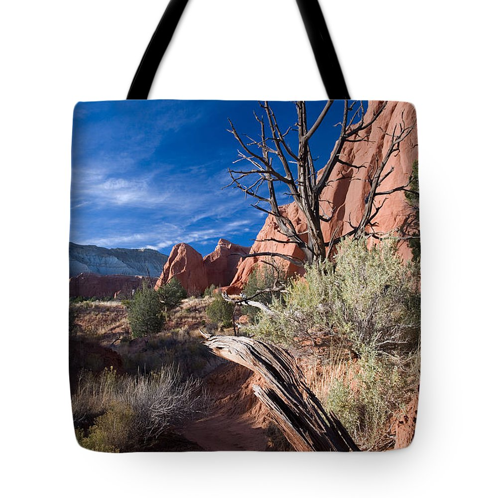 Kodachrome State Park Tote Bag featuring the photograph Kodachrome Sunset by Mike Dawson