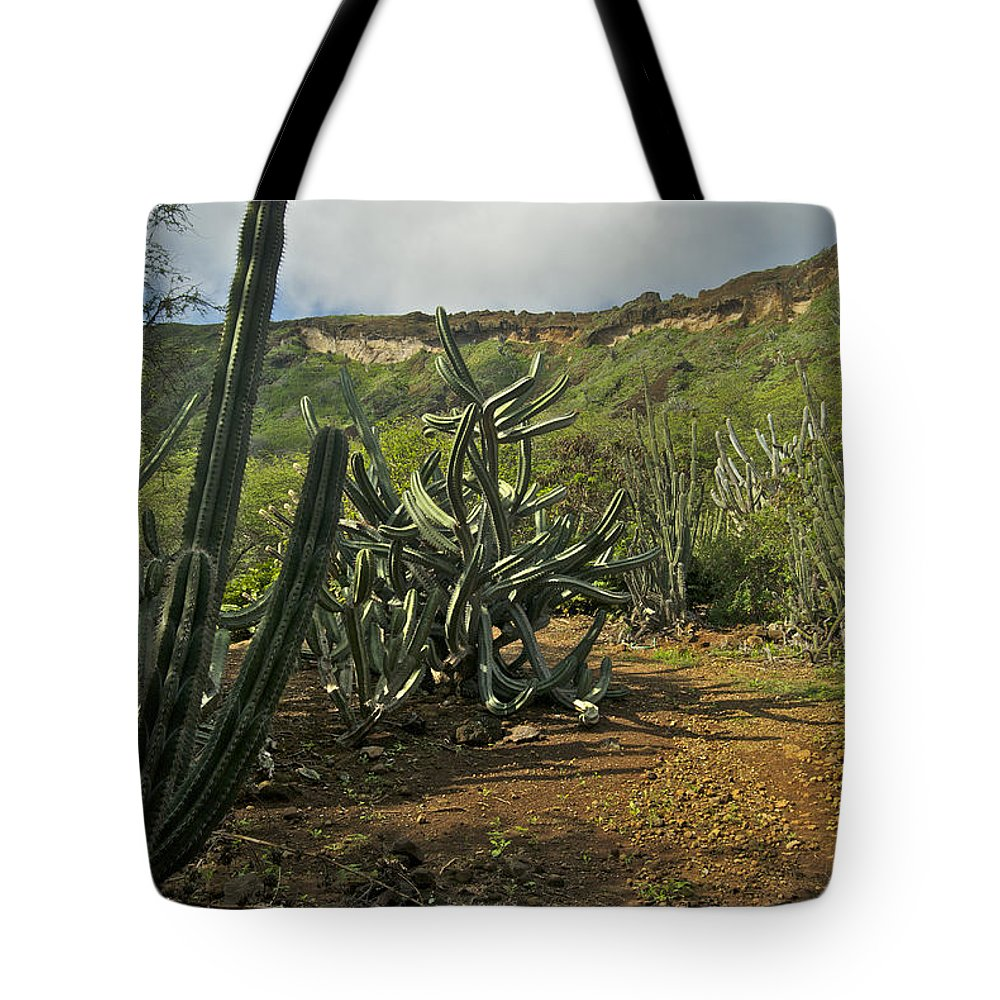 Landscape Tote Bag featuring the photograph Koko Caldera by Michael Peychich