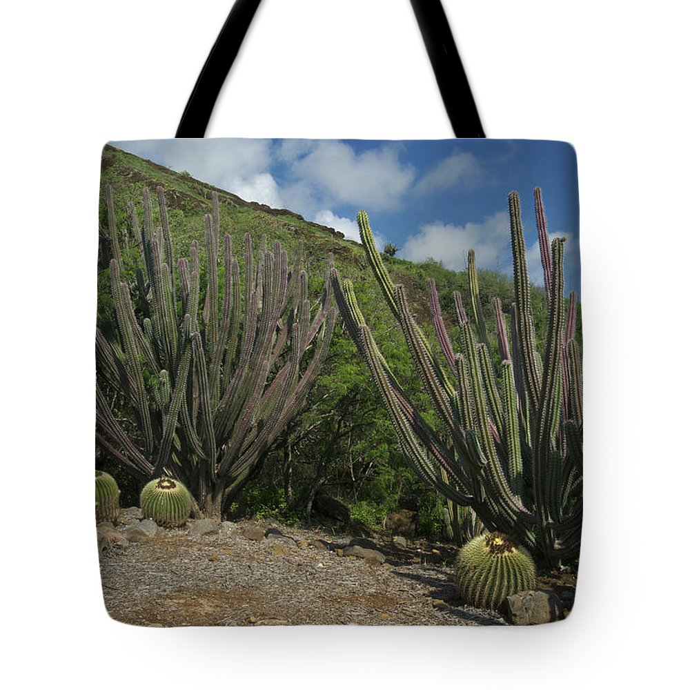 Landscape Tote Bag featuring the photograph Koko Crater Cacti by Michael Peychich
