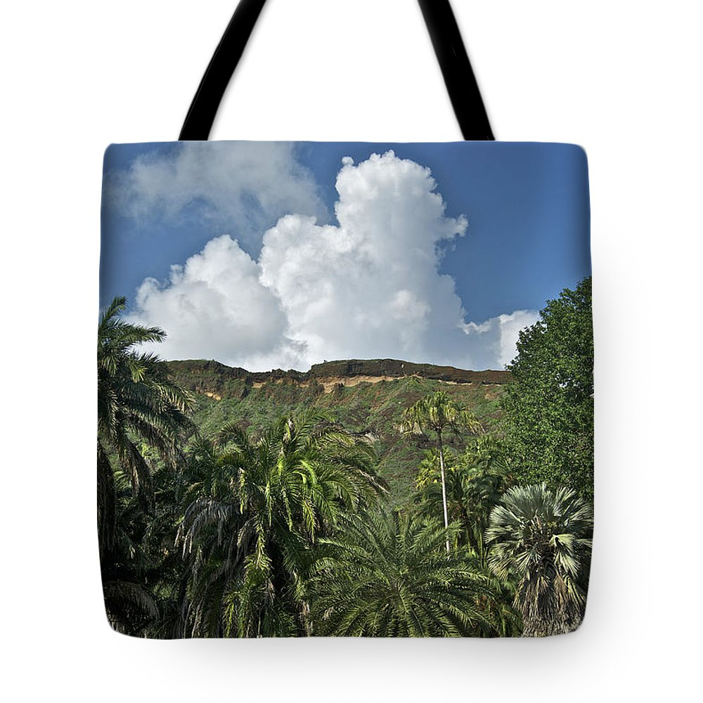 Landscape Tote Bag featuring the photograph Koko Crater Trail by Michael Peychich