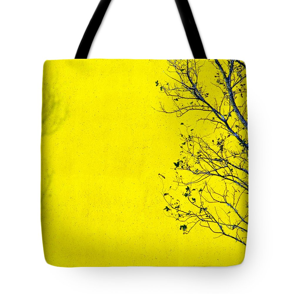 Skip Tote Bag featuring the photograph Krishna by Skip Hunt