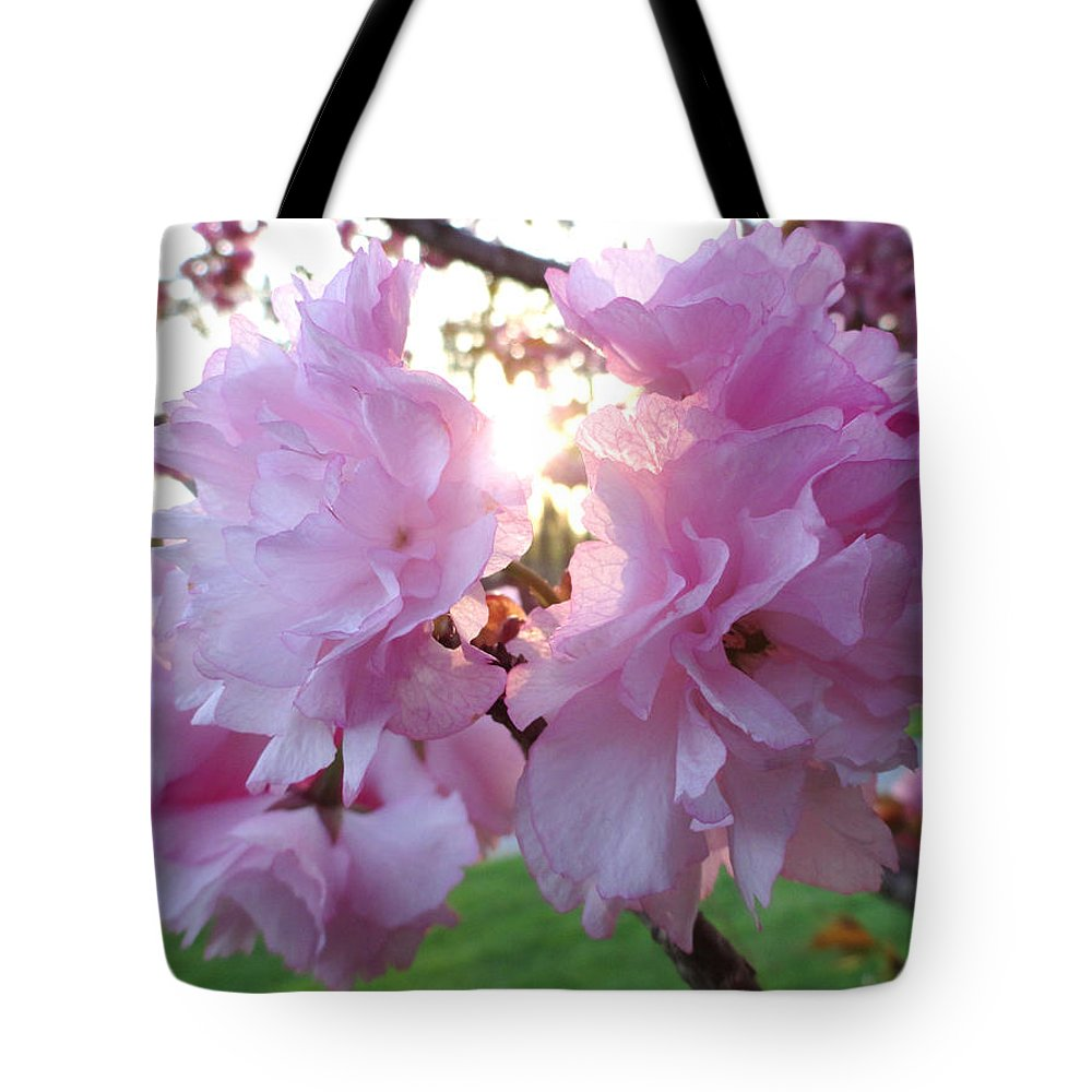 Kwanzan Tote Bag featuring the photograph Kwanzan Cherry Blossoms by Christopher Spicer