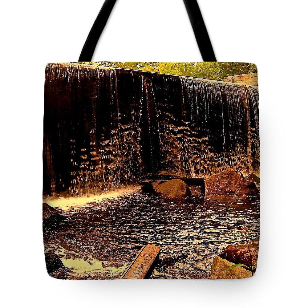 Tote Bag featuring the photograph Resonuncia De La Mision by Elizabeth Tillar